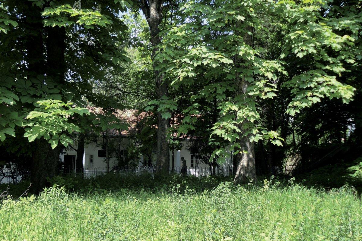 Gárdonyi Garden